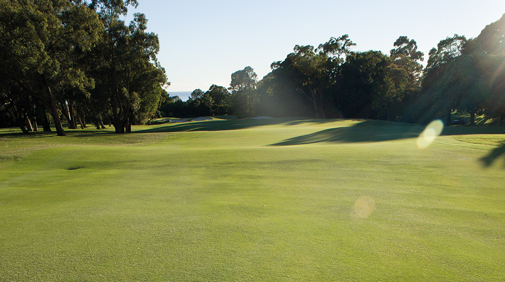 Golf course_herbicide article