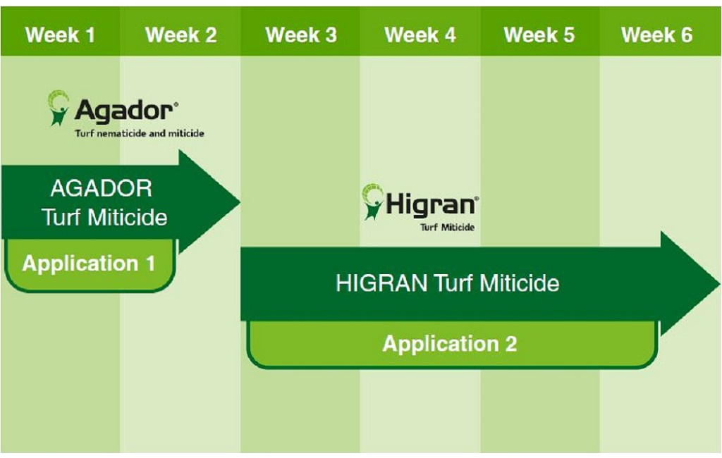 Example Syngenta base mite program to deliver population knockdown and life cycle breaking longevity, giving an effective control period of up to 6 weeks.