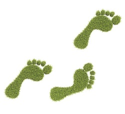 Grass Feet Smaller Carbon Footprint