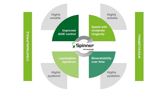Spinner - Two actives graphic