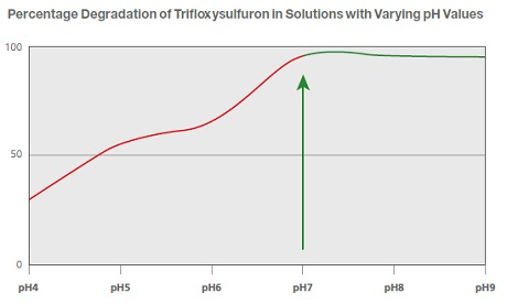 Percentage Degradation of Trifloxysulfuron in Solutions with Varying pH Values