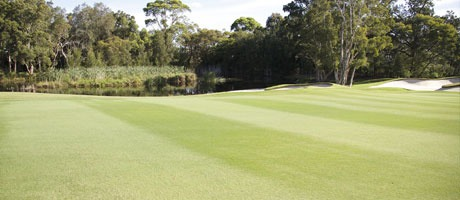 Fungicide Fairways