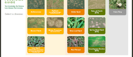 Syngenta Turf Fungicide Guide